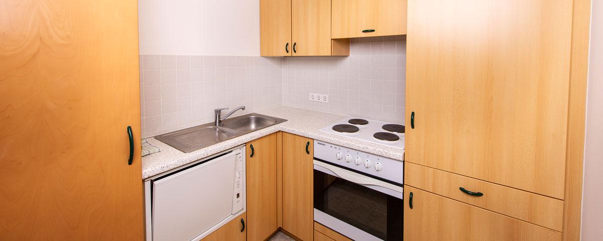 Küche im Apartment des Hotel Xylophon in Lutzmannsburg